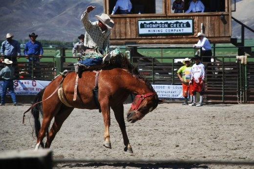 This was my first rodeo experience and I LOVED IT! the energy of the place was sky high and I was full of admiration for these expert riders who not only rode to submission wild horses and bulls, but then built such a symbiosis with the animals that I even thought the horses enjoyed been ridden!