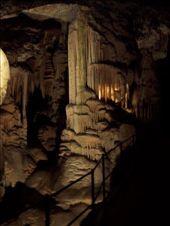 Inside the Postojnska Caves: by burrellian, Views[366]