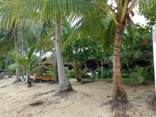 how to get from koh lanta to koh samui
