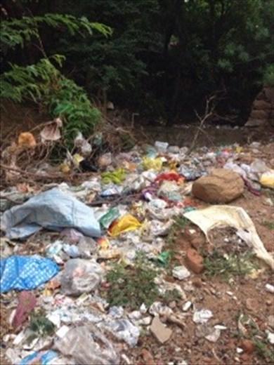 Garbage disposal - a sad sight