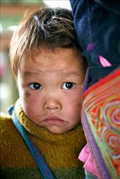 This little child afraid and yet intrigued peered out from behind his mother while I was looking at the local materials. The Sapa ladies need to keep working and often have little babies strapped to their backs. : by caitlinm, Views[446]