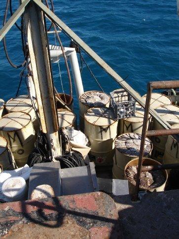 Petrol barrels, filled up with shells.