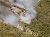 Boiling water pools, Taupo.: by candjmcshane, Views[205]
