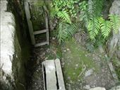 Remains of cellar, buried village, Rotarua. : by candjmcshane, Views[195]