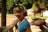 Danielle having fun with the Ostrich.: by cape_bound, Views[370]