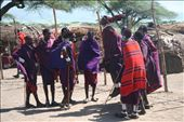 Masai men jump to impress the ladies.: by cape_bound, Views[226]