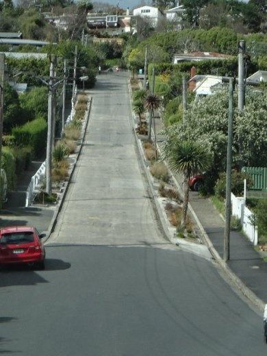 Baldwin St...steepest street in the world.