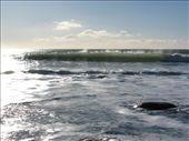 Oakura beach: by carla_and_dean, Views[186]