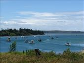 Pukenui Harbour: by carla_and_dean, Views[81]