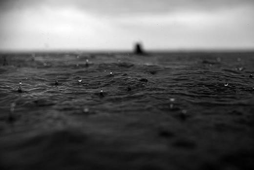 Detail of the drops of rain falling down the sea