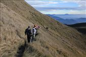 After saying our goodbyes to Mt. Pulag it was time to head back to civilization.: by carmendp, Views[170]