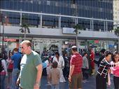Hollywood Boulevard, LA: by carolwil, Views[253]