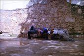 Sideway siestas: by cassandrasherene, Views[109]