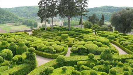 Crazy topiary at the jardin du Marqueyssac