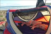 Sleeping in style on the beach: by ccandj6monthsaway, Views[208]