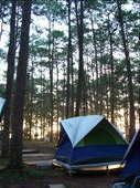 My tent at dawn: by celinexiaolin, Views[360]
