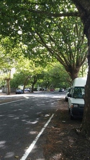 Romantic Franklin Road. I just stumbled upon it.