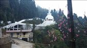 The Buddhist temple: by cfitchey, Views[42]