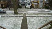 December 14 snow in Vancouver: by chantelle, Views[148]