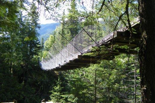 Suspension Bridge Crazy Creek Suspension Bridge and Waterfalls Just outside Revelstoke June 14th