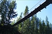That bridge is high Crazy Creek Suspension Bridge and Waterfalls Just outside Revelstoke June 14th: by chantelle, Views[386]