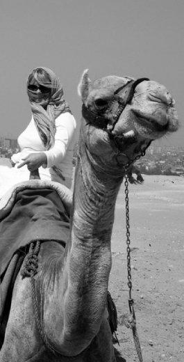 I loved riding a camel!