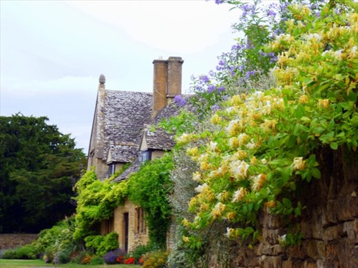beautiful cottage in a cotswold village