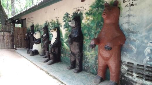 All types of bears - Khouang si Waterfalls - Laos - WorldNomads.com