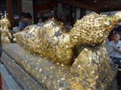 People buy gold leaf and press it against the Buddha.: by chicagoguy, Views[165]