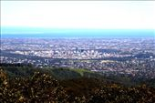 Adelaide: by chiclet, Views[148]