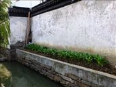 canal wall side garden: by chinaho, Views[68]