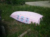 Bob the pink dinghy: by chloe, Views[250]