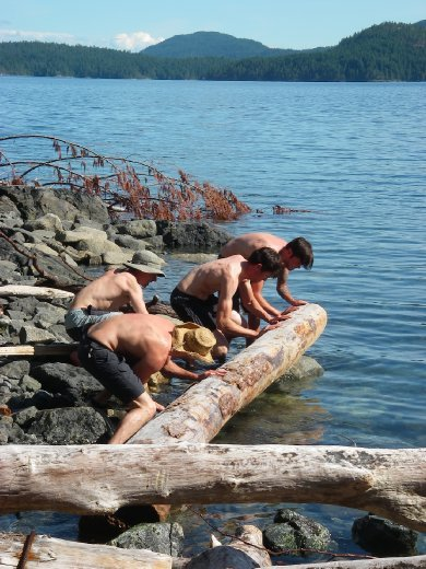 More log rolling, kept the boys occupied