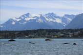Haines: by chris_and_dusk, Views[137]