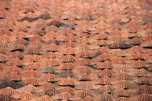roof tiles at the temple of lliterature
