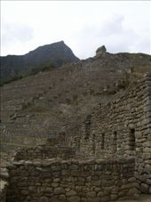Inca Trail day 4: The ruins: by chrisbyrne6, Views[188]