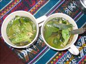 coca tea, national tea of peru, : by christinasandra, Views[293]