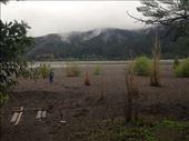 River Bio Bio, bordering the property of Paulo.: by christinebaker, Views[113]
