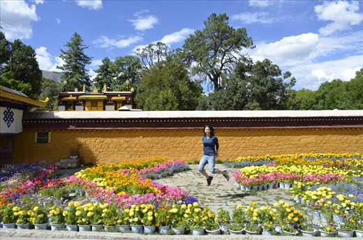 This was taken at the Norbulingka compound in Lhasa. If you want to see a drastic difference, check out my photo submissions for the 2011 photography competition!