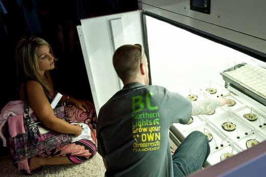 A Vendor From BC Northern Lights Showcases A Marijuana Grow Box To An  Attendee At The