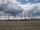 Hokatita, West Coast: by clare-tamea, Views[93]