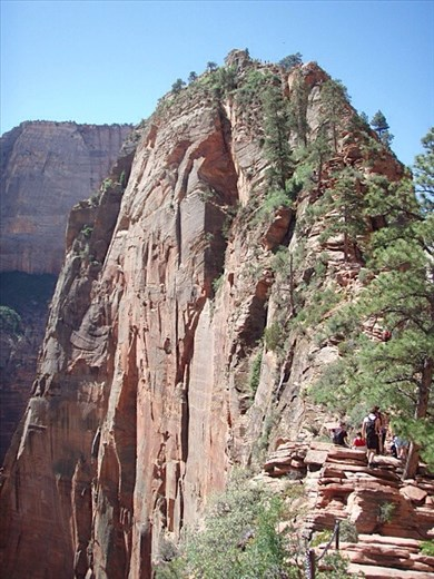 Angels' Landing walk, Zion - check out the sheer cliff top views!