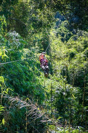 Flight of the Gibbon zip lining through the jungle canopy