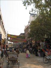 Busy Varanasi roads: by clarinette, Views[329]