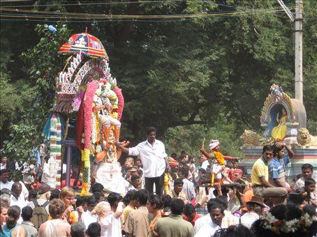 More Pongal celebrations
