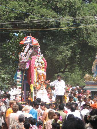 Pongal celebrations...