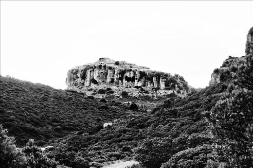 Monte Corongiu N.2 (Sardegna)
