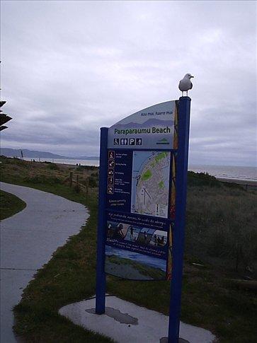 Praia de Paraparaumu Beach