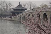 Summer palace: by col_n_sue, Views[63]