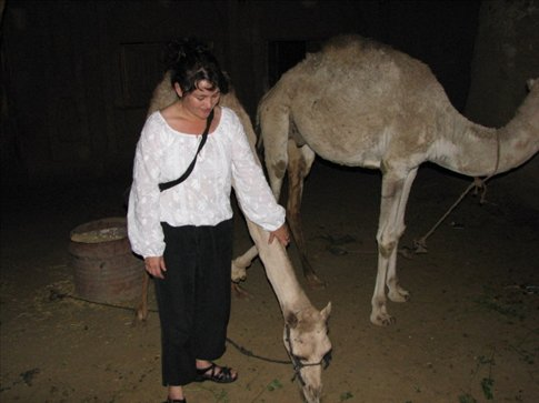 Me and a Kom Ombu camel